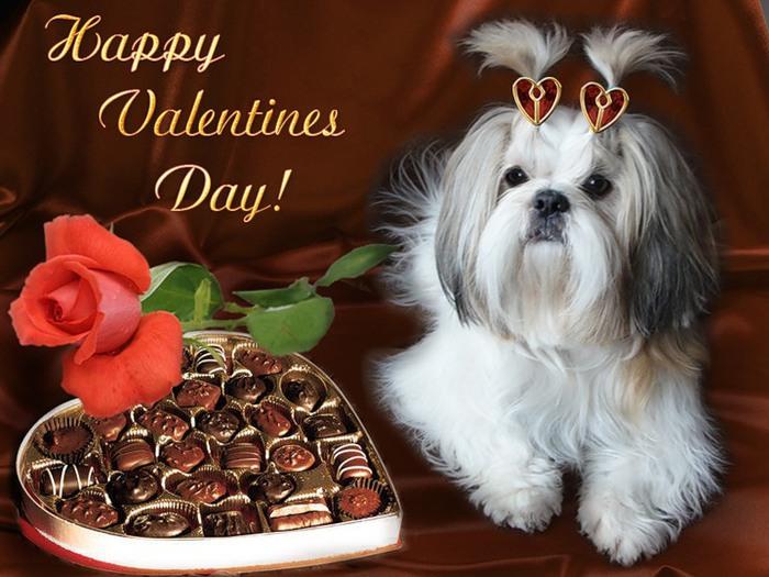 Поздравления с днем рождения святого валентина